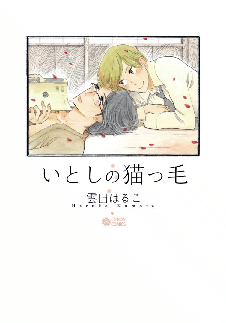 Itoshi no nekokke