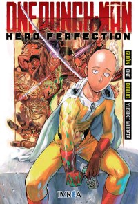 one punch man hero perfection